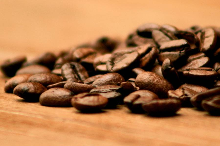 Beans used in San Marcos coffee