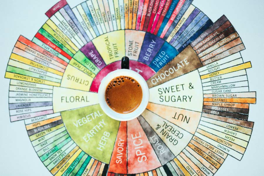 Cup of Coffee on top of a circular flavor chart
